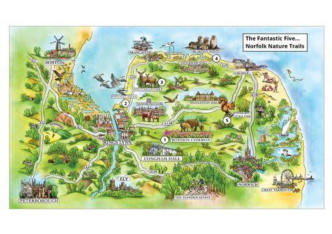 The Fantastic Five...Norfolk Nature Trails